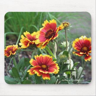Blanket Flowers Photo Mousepad