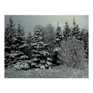 Blanket Of Snow Poster