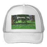 Blarney Cap