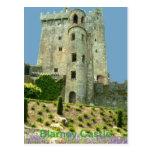 Blarney Castle County Cork Post Card