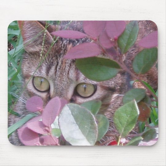 Blaze Cat Eyes Mousepad