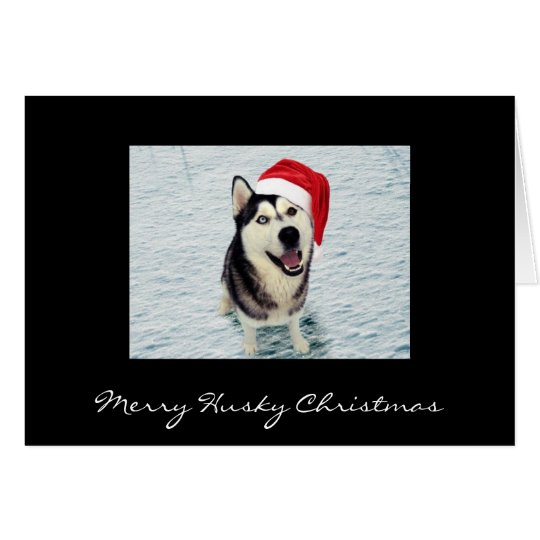 Blaze - Merry Husky Christmas Card