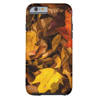 Blazing Autumn Leaves Tough iPhone 6 Case