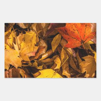 Blazing Autumn Leaves Rectangular Sticker