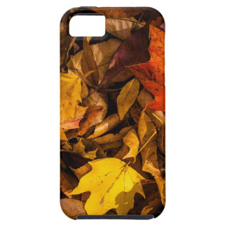 Blazing Autumn Leaves Tough iPhone 5 Case