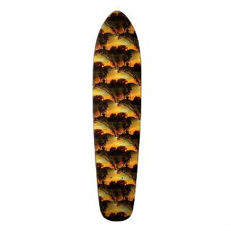 Blazing Florida Golden Sunset Skate Boards