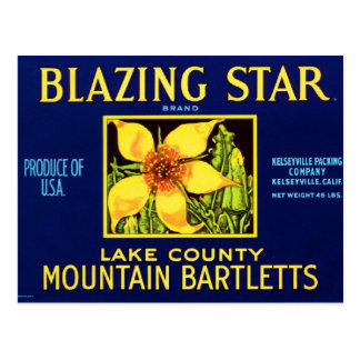 Blazing Star Pears Postcard