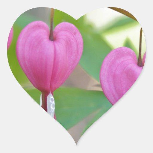 Bleeding Heart Blossoms Stickers