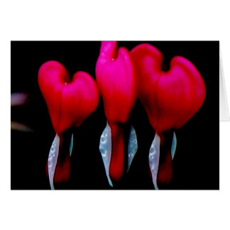Bleeding Heart Card
