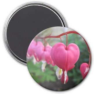 Bleeding Heart (Dicentra) 7.5 Cm Round Magnet