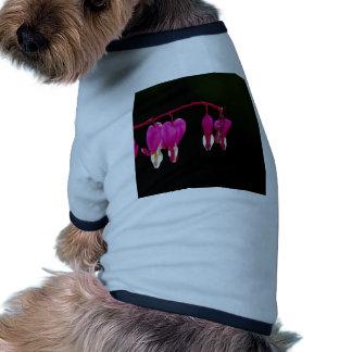 Bleeding-heart Pet Shirt