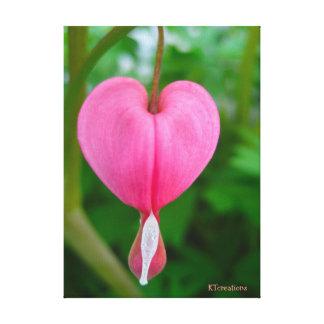 Bleeding Heart Flower Gallery Wrapped Canvas
