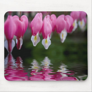 bleeding heart flower mousepad