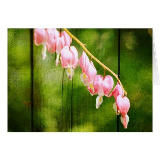 Bleeding Heart Flowers Card