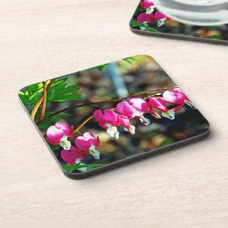 Bleeding Heart Flowers Beverage Coasters