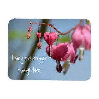 Bleeding Heart Flowers Rectangular Photo Magnet