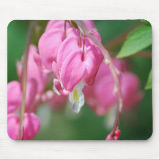 Bleeding Heart Flowers Mouse Pad