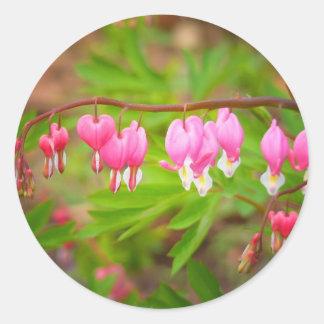 Bleeding Heart Flowers With Heart Petals Round Sticker