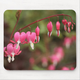 Bleeding Hearts Flower Mouse Pad