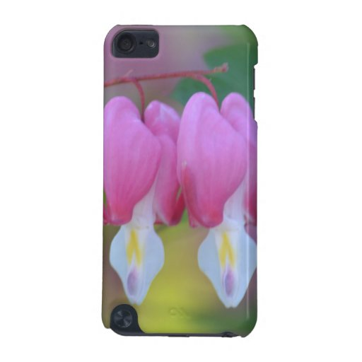Bleeding Hearts Flowers iPod Touch 5G Cases