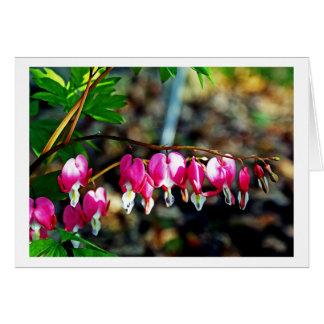 Bleeding Hearts Flowers Note Card