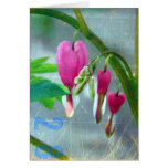 Bleeding Hearts Greeting Cards