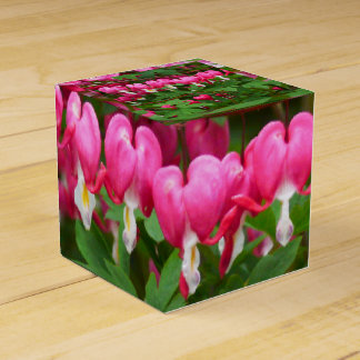 Bleeding Hearts Nature, Photo Favour Box