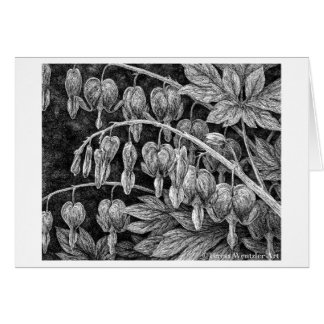 Bleeding Hearts Pen and Ink Drawing Card