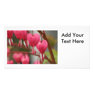 Bleeding Hearts Picture Picture Card