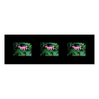Bleeding Hearts. Pink Flowers. Double-Sided Mini Business Cards (Pack Of 20)