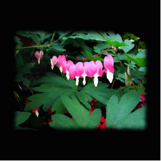 Bleeding Hearts. Pink Flowers. Photo Sculpture Badge
