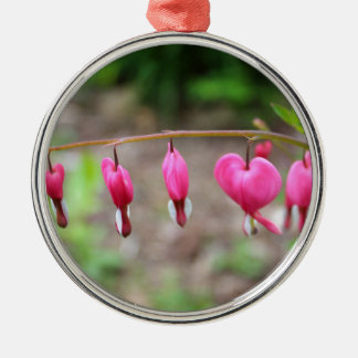 Bleeding Hearts Silver-Colored Round Decoration