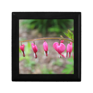 Bleeding Hearts Small Square Gift Box