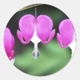 Bleeding Hearts Round Sticker