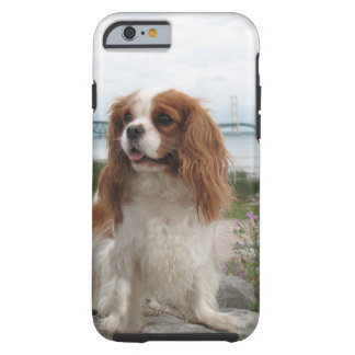 Blenheim Cavalier Mackinaw Bridge Michigan Tough iPhone 6 Case