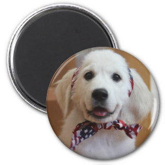 Bless the USA, America 6 Cm Round Magnet