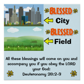 Blessed in the City/Field