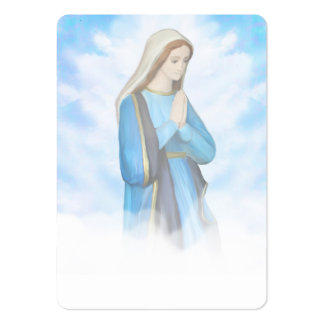 Blessed Virgin Mary Business Card Pack Of Chubby Business Cards
