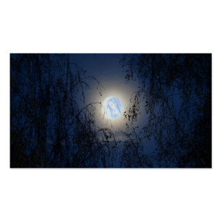 Blessed Virgin Mary in the Moon Lite Forest Pack Of Standard Business Cards