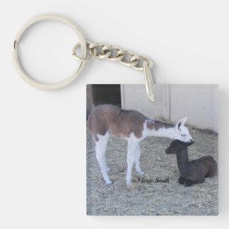 Bleu & Zeus Single-Sided Square Acrylic Keychain