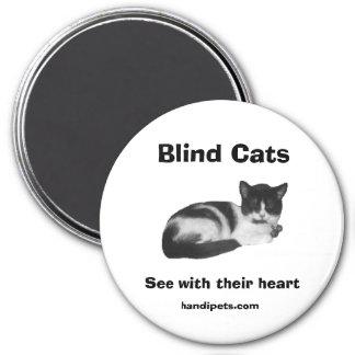 Blind Cat Magnet