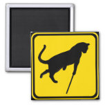 Blind Cats Crossing ! Square Magnet