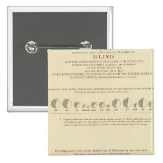 Blindness, Statistical US Lithograph 1870 15 Cm Square Badge