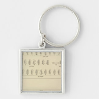 Blindness, Statistical US Lithograph Keychain