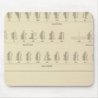 Blindness, Statistical US Lithograph Mouse Pad