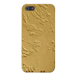 Bling Gold iPhone Case Personalized Covers For iPhone 5