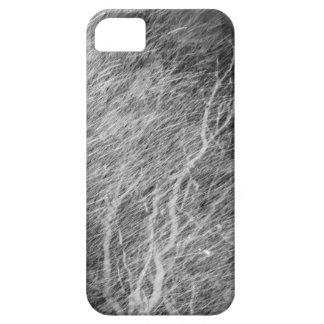 Blizzardphone II iPhone 5 Cases