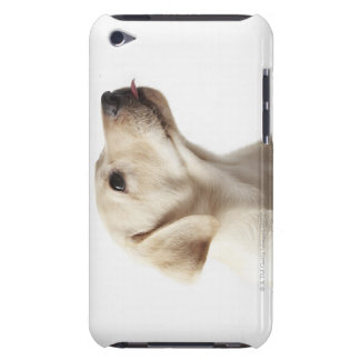 Blond Labrador puppy sticking out tongue iPod Touch Covers