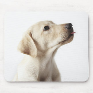 Blond Labrador puppy sticking out tongue Mouse Pad