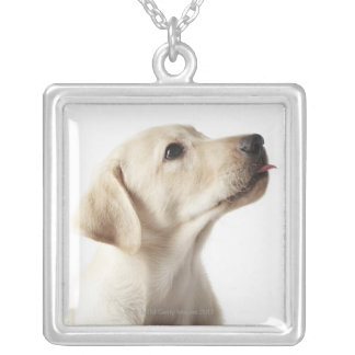 Blond Labrador puppy sticking out tongue Silver Plated Necklace